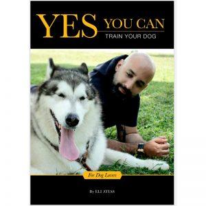 Book Cover YYC - K9 Bioshield