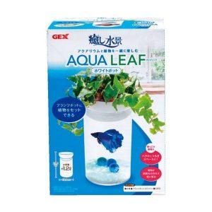 GEX Aqua Leaf White GX030580 (1) - GEX - ReinBiotech