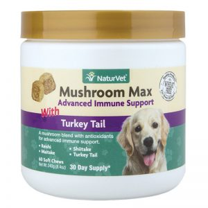 Mushroom Max With Turkey Tail - NaturVet - Silversky