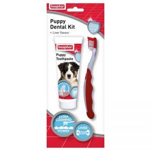 Puppy Dental Kit - Beaphar - Adec Distribution