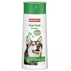 Shampoo Bubble Tea Tree Oil DogCat - Beaphar - Adec Distribution