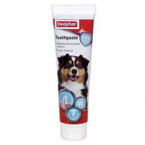 Toothpaste Dog Cat - Beaphar - Adec Distribution