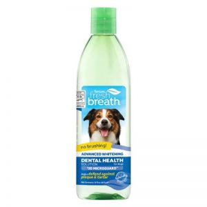TropiClean Fresh Breath Advanced Whitening Dental Health Solution for Dogs, 16oz - TropiClean - Silversky