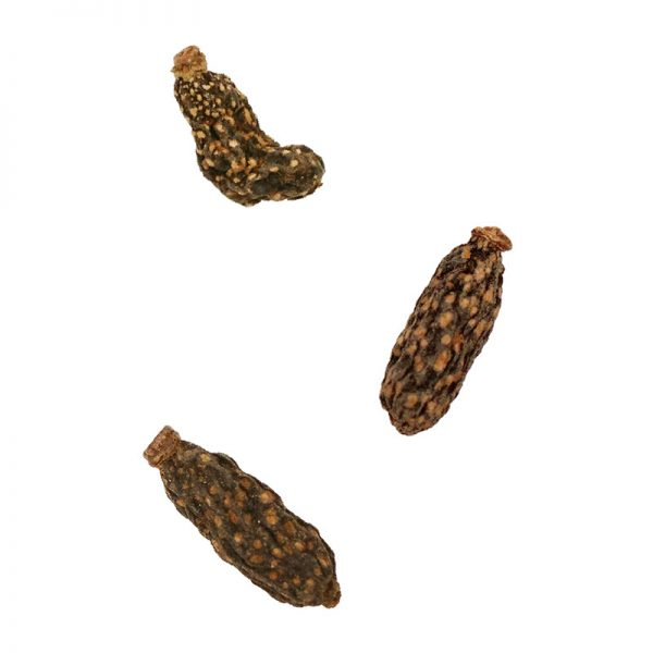 DM-84532 Natural Silvervine Gall Fruits 15g & Toy 2 - Catty Man - Noble Advance