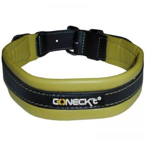 Leather Collar Green EVERYDAY LIFE L - Connect - Adec Distribution