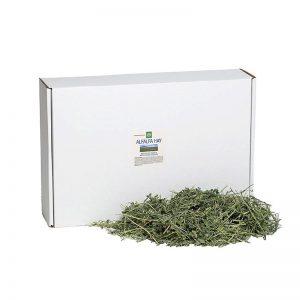 Alfalfa Hay - Small Pet Select - Yappy Pets (2)