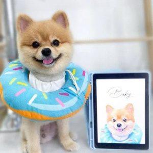 Custom Pet Portrait Basic Digital Art (Headshot Style) (7) - Amber Art Gallery