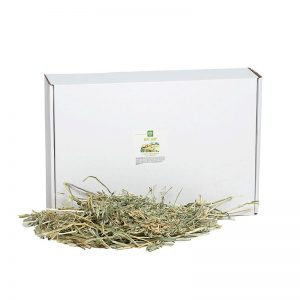 Oat Hay - Small Pet Select - Yappy Pets (2)