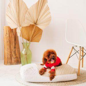 Ashley Cooling Dog Bed - Dream Castle