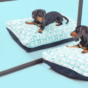 DreamCastle Cooling Dog Bed For puppies to medium sized breed Coby (1)