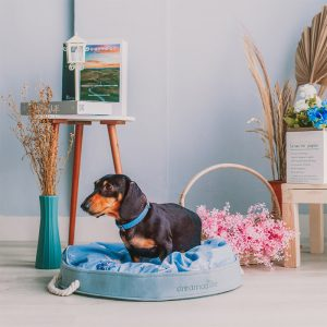 Dreamcastle Deborah round dog bed main image