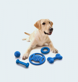 Pet Toy Set