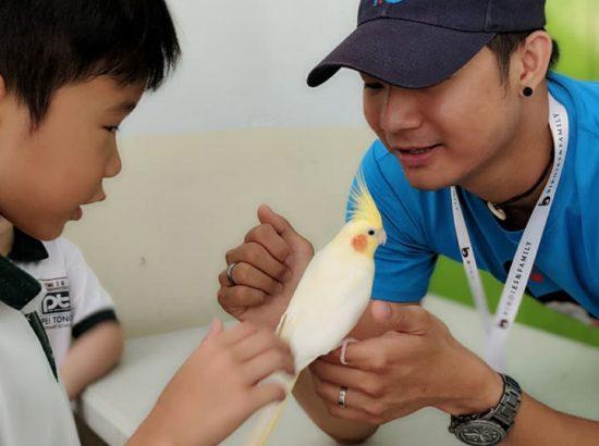 Birdies And Family Sg