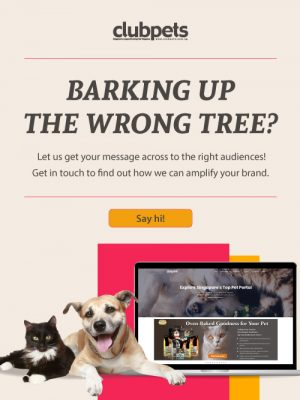 Advertising with clubpets