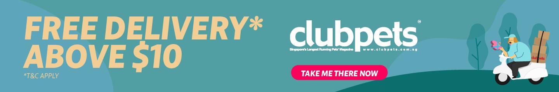clubpets E-store
