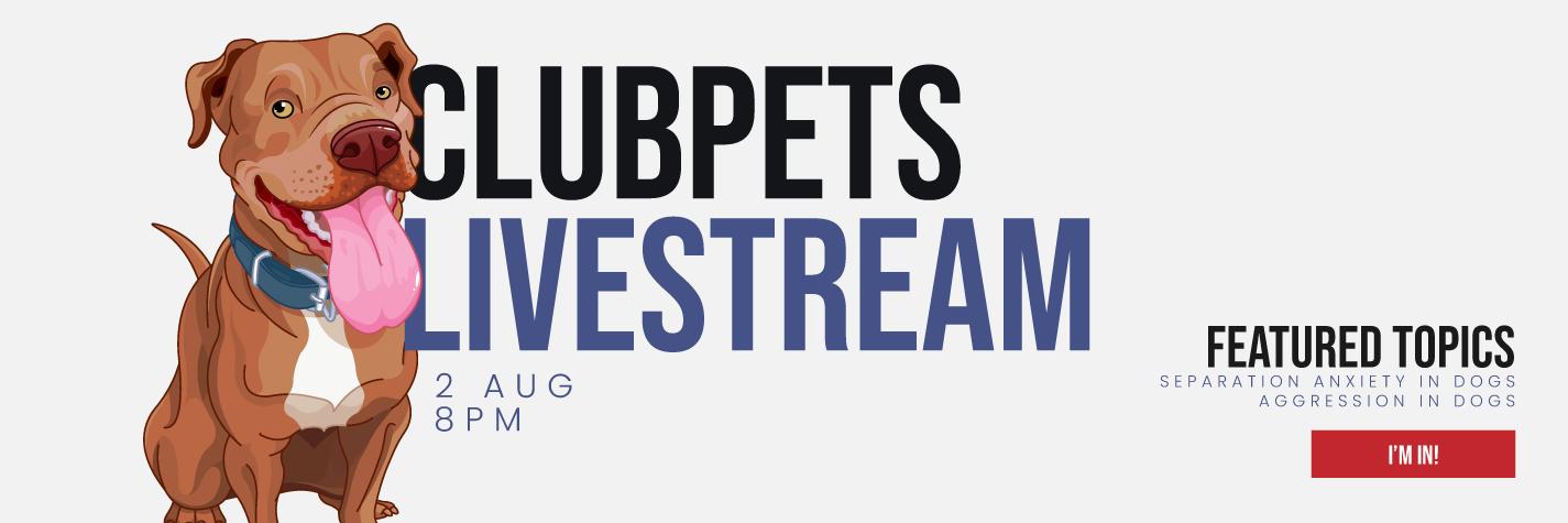 CP Livestream