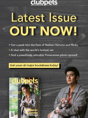 Latest Issue | clubpets