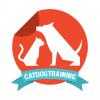 CatDog Training