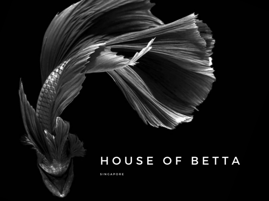 House Of Betta