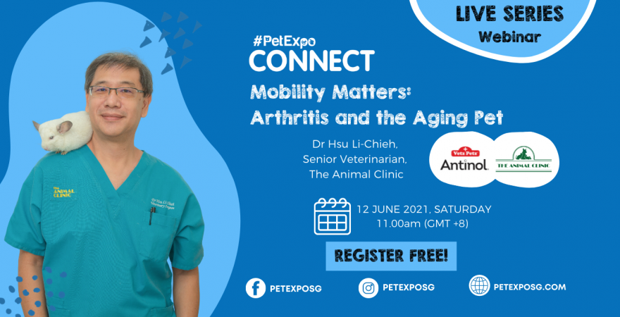 Mobility Matters: Arthritis and the Aging Pet – Webinar