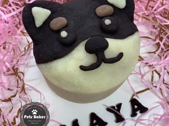 Pets Baker