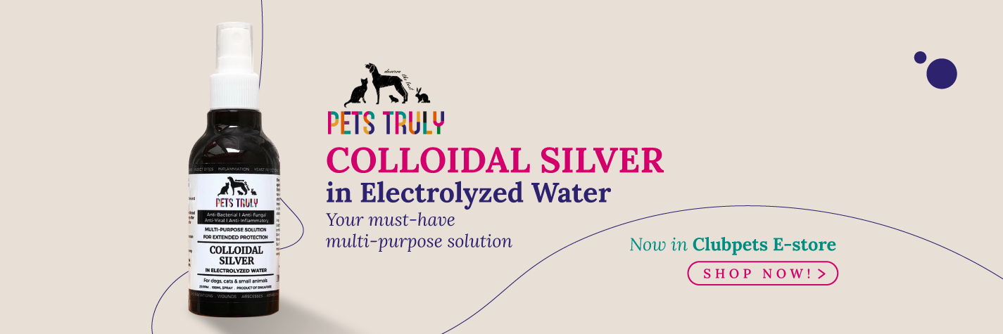 Pets Truly Colloidal Silver in Electrolyzed Water | Pets Truly
