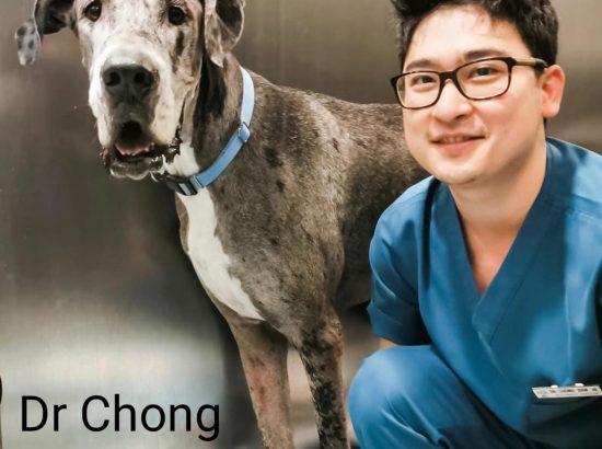 Vets For Life Animal Clinic @JURONG KECHIL