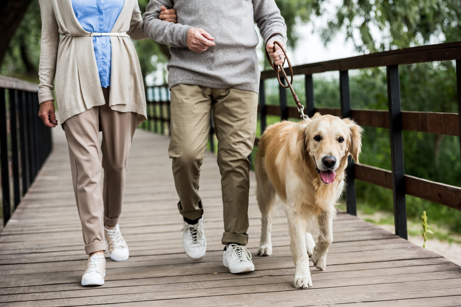 5 Ways Pets Help with Active Ageing
