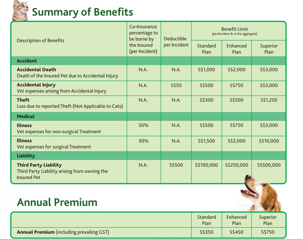 My Paw Pal, PetCare & More: A Guide to Purchasing Pet Insurance in Singapore