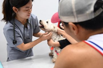 Free Pet Microchipping, Health Checkups & More are Back at NParks' Pets' Day Out Event!