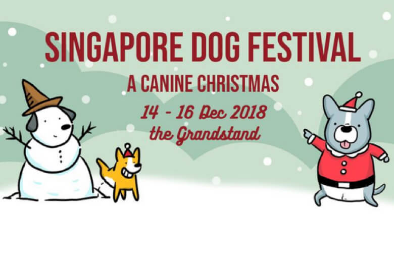 Get in the Pawliday Mood at the Canine Christmas Night Market