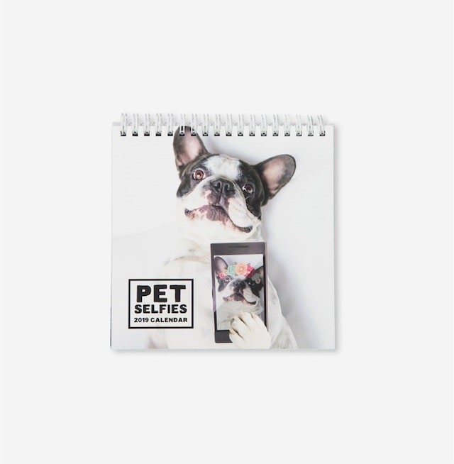 Holy Cuddley Smokes: Pet Calendars to Brighten 2019 with