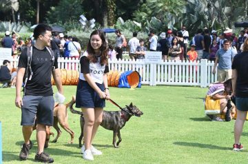 NParks' Unfurgettable Pets' Day Out