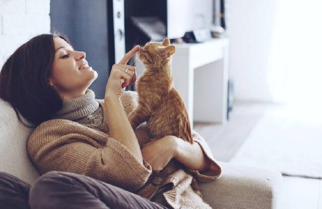 Pet Boarding VS. Pet Sitter: Which Is Better?