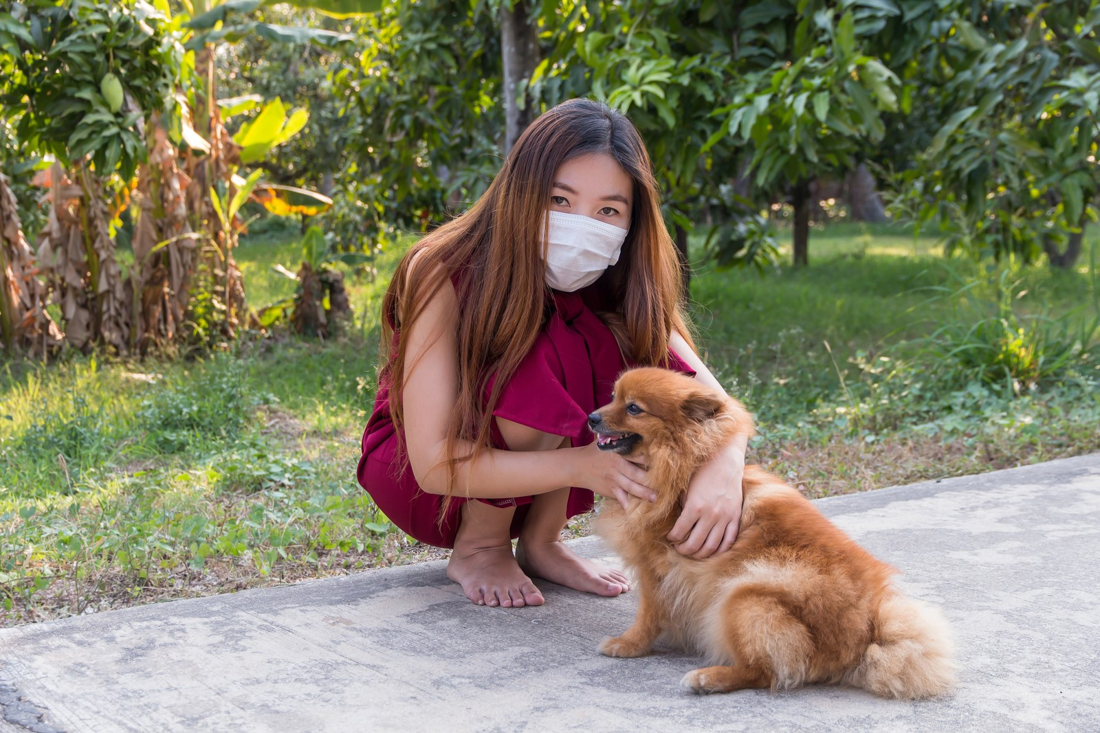 Pet Allergy-Induced Asthma: Causes, Symptoms & Precautions