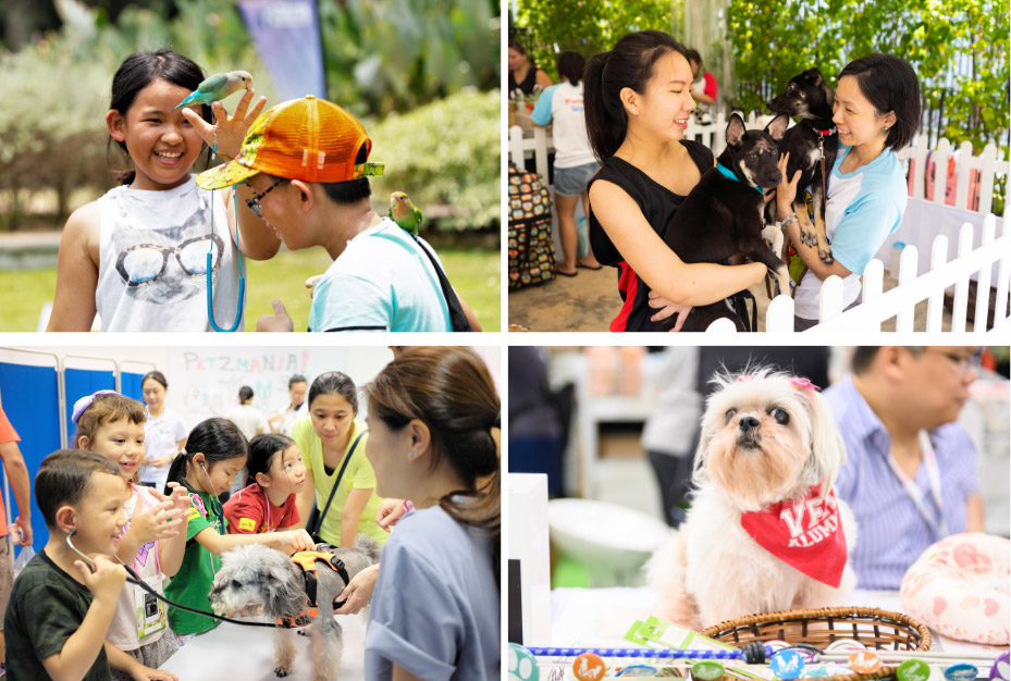 What You Missed: NParks Parks Festival & Pets' Day Out