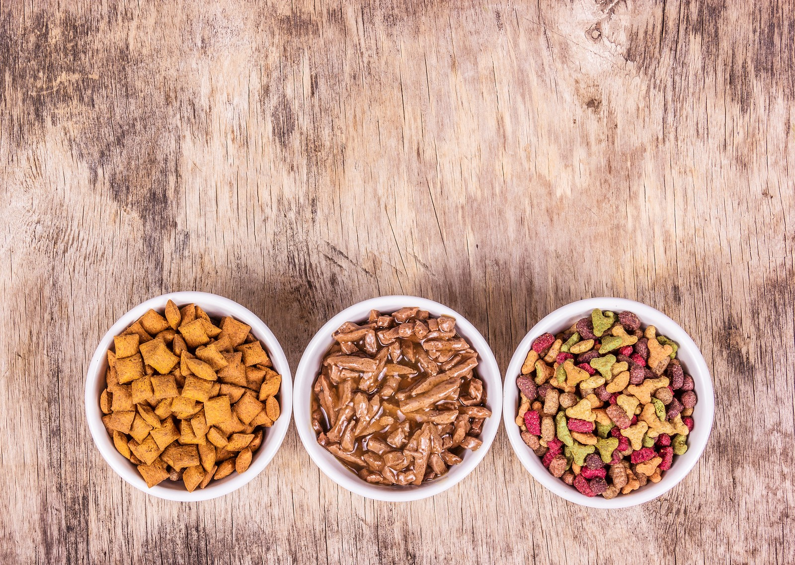 Dry Or Wet Cat Food: Which Is The Better Option?