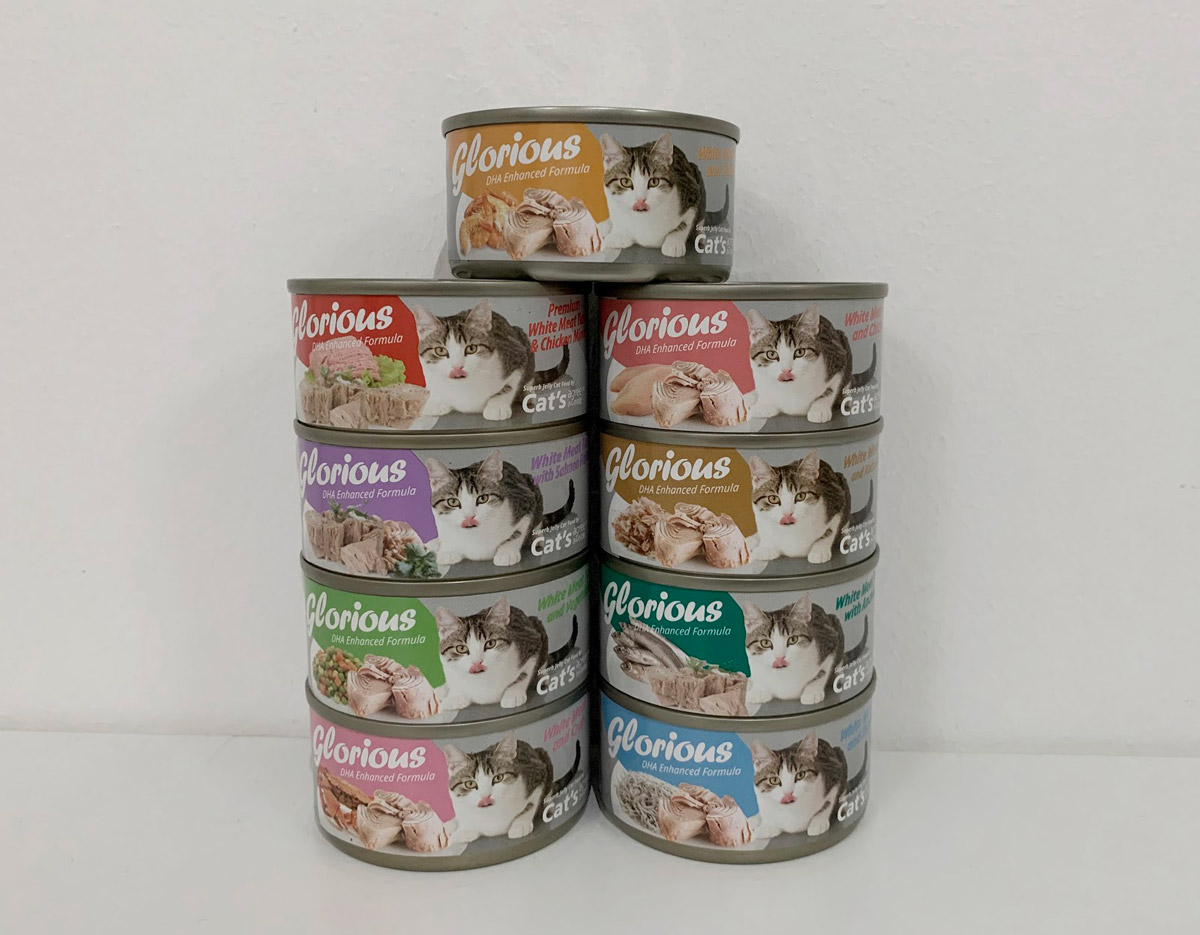 What Is A Balanced Nutritional Diet for Your Cat?