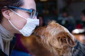 5 Illnesses That Pets Can Contract From Humans