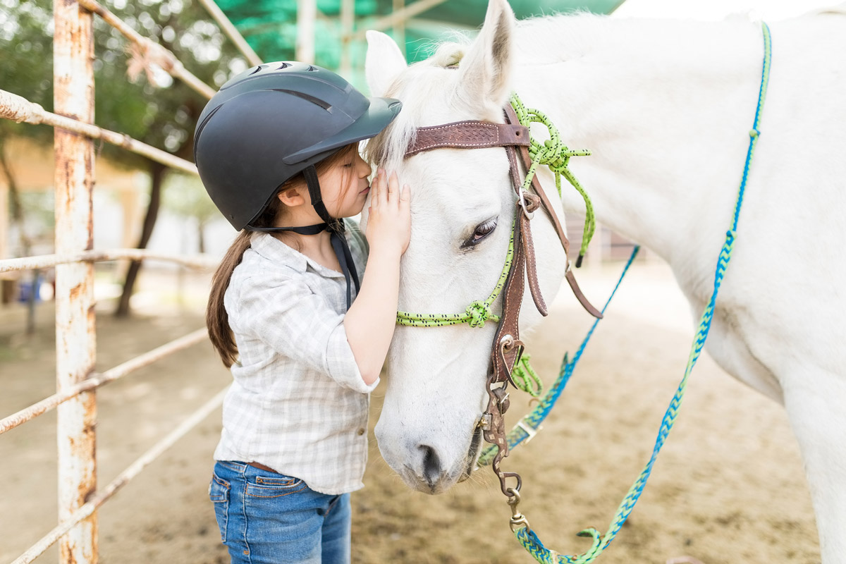 Animal-Assisted Therapy: Benefits & Effectiveness