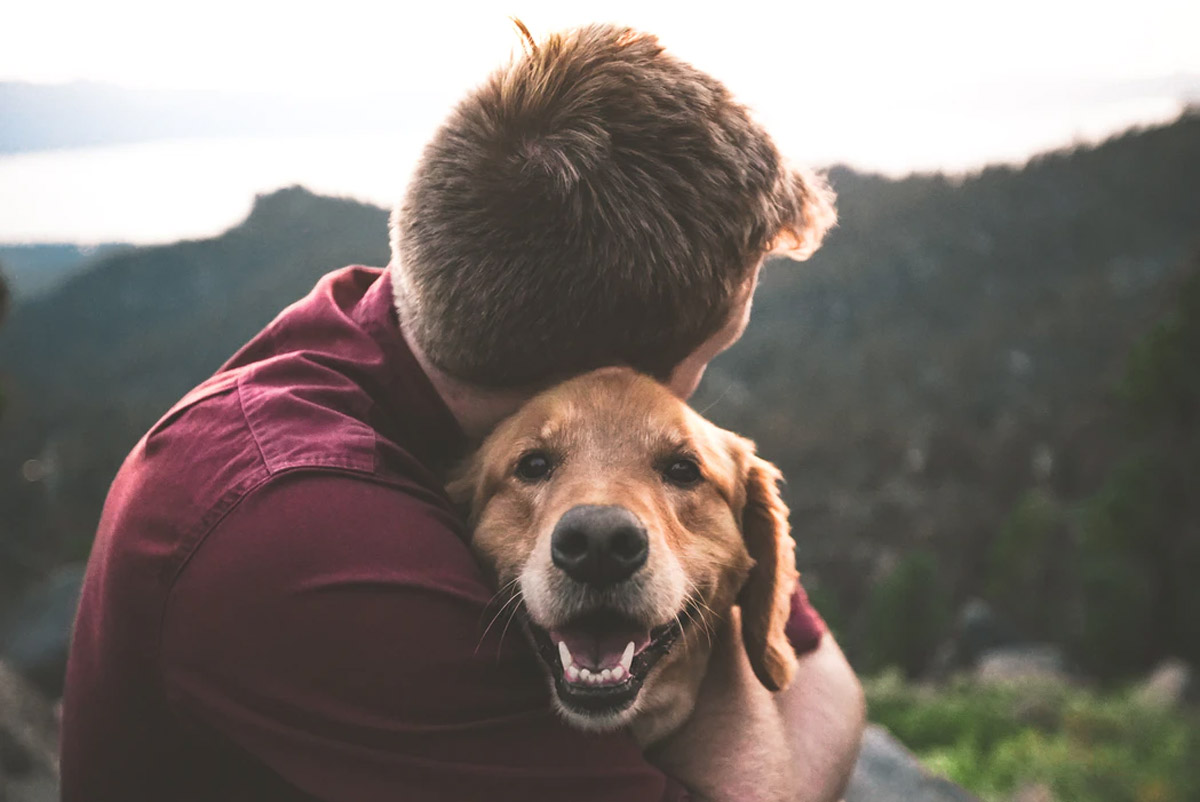 The Hidden Benefits of Owning Pets