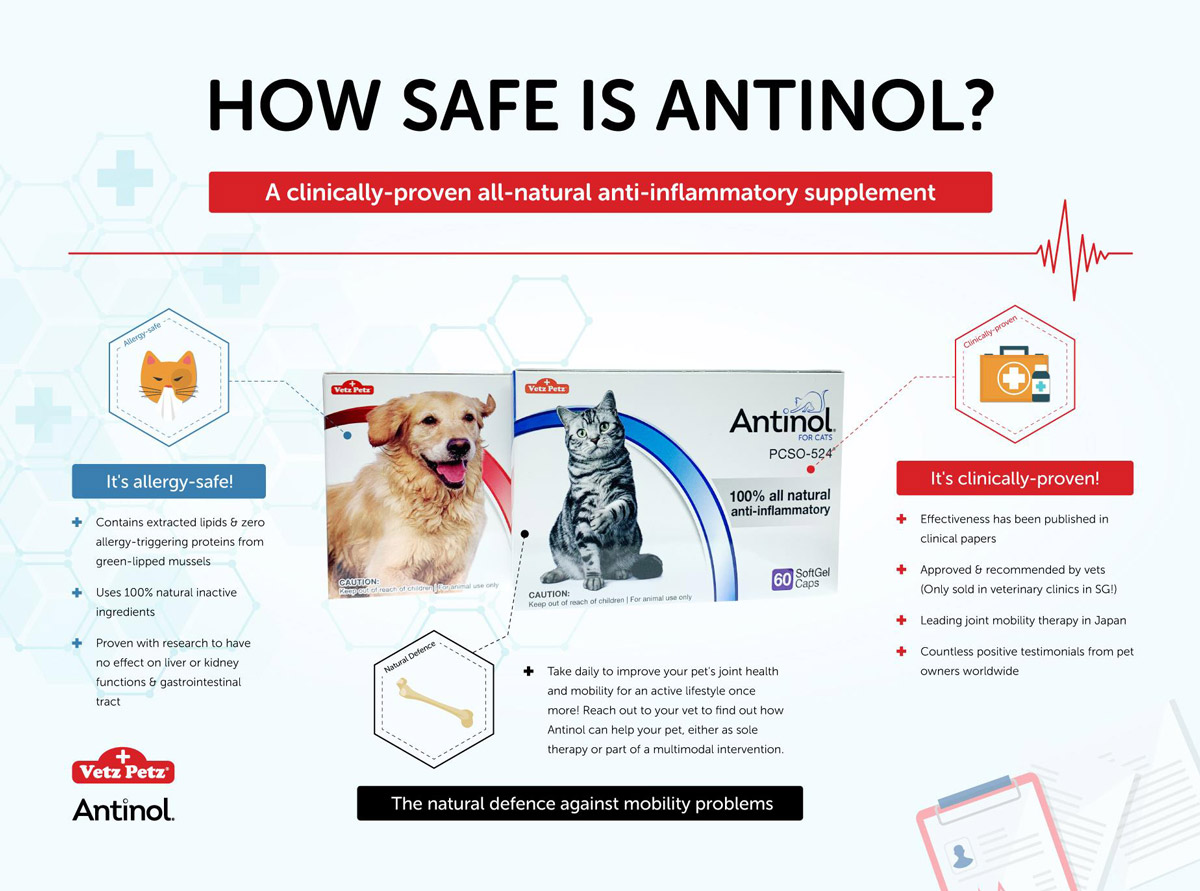 Antinol®: The Joint Supplement for Osteoarthritis
