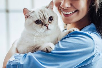 Why Should You Bring Your Healthy Pet to the Vet?