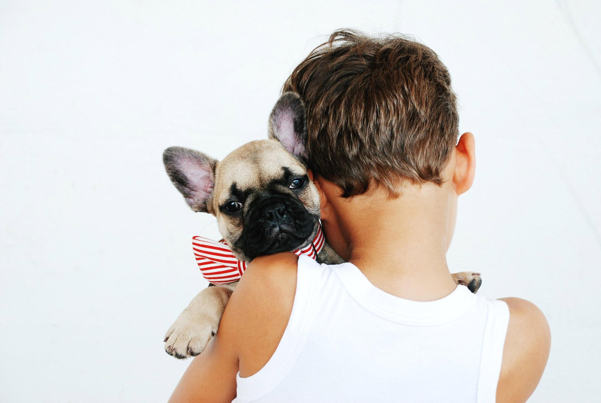 Appreciating Fido: Why Dogs Can Be the Best Kind of Pets