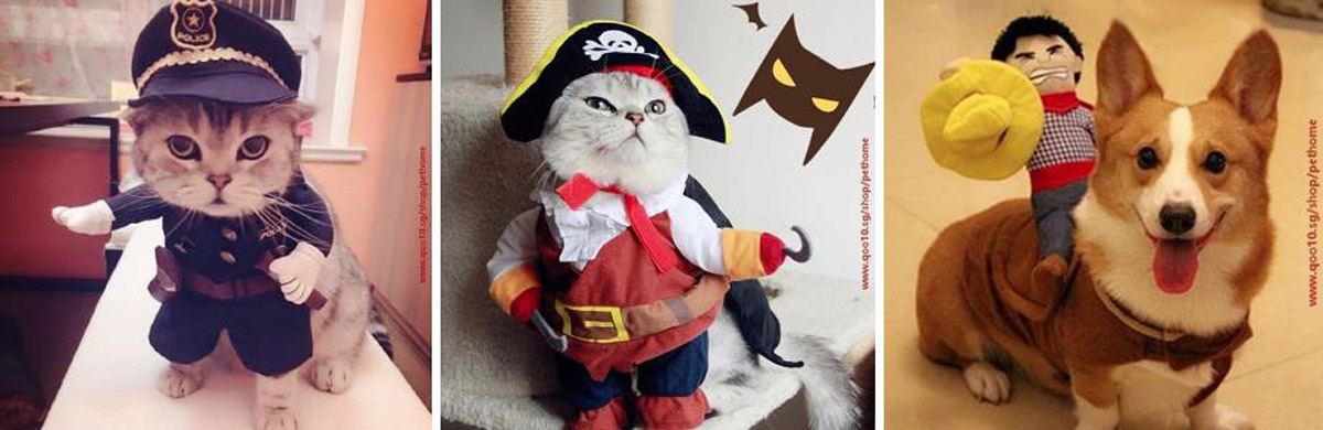 Spooky or Cute, Here are Some Halloween Costume Inspirations for Your Pets