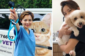 "4 Reasons Why You Need to Know Happy Vet, the ""Vet-on-Wheels"" Mobile Vet Service in Singapore"
