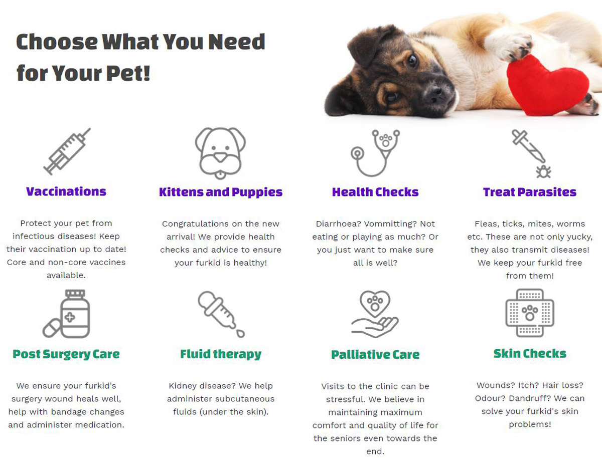 """4 Reasons Why You Need to Know Happy Vet, the """"Vet-on-Wheels"""" Mobile Vet Service in Singapore"""