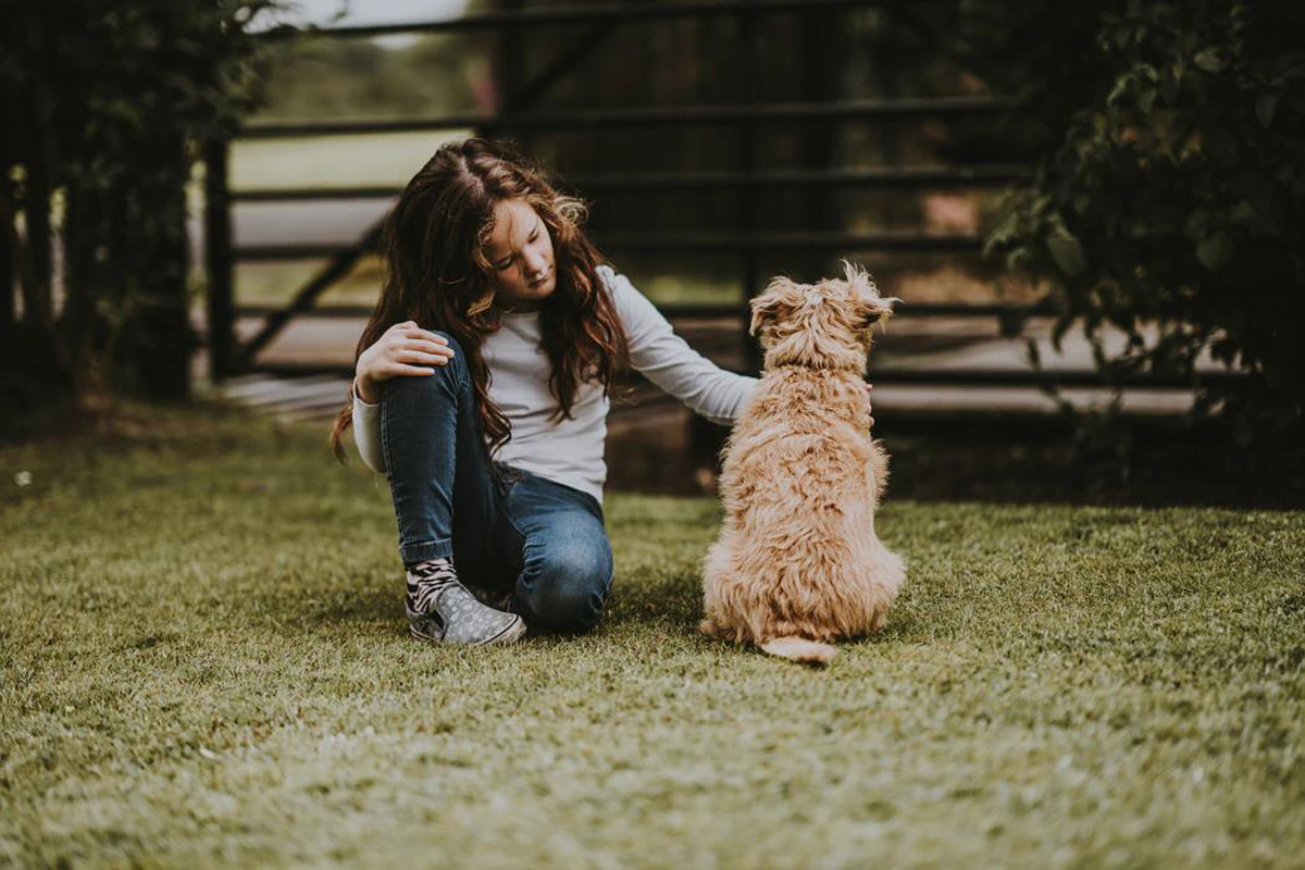 4 Ways To Encourage Positive Behaviour In Your Dog