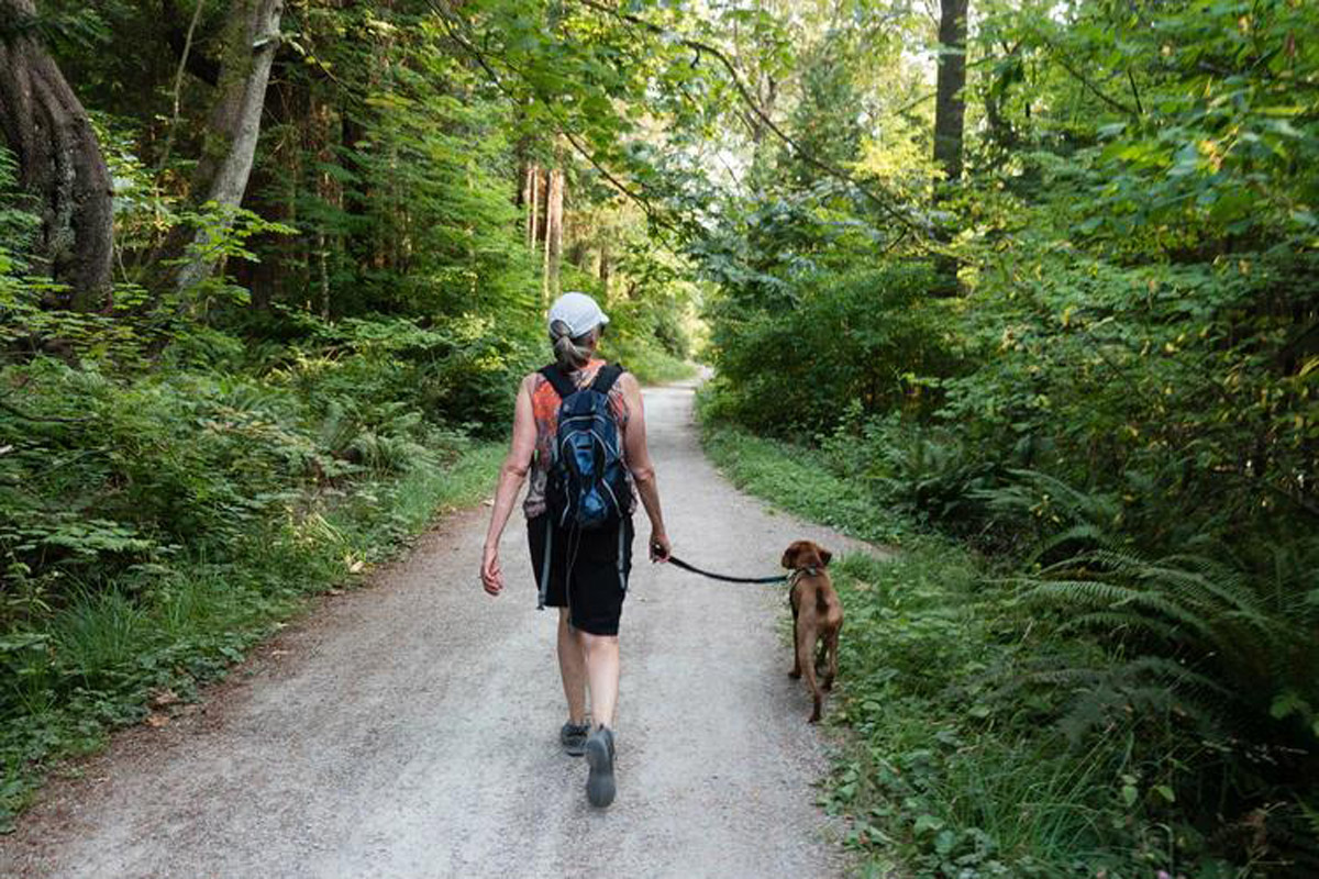 The Benefits of Walking Your Dog