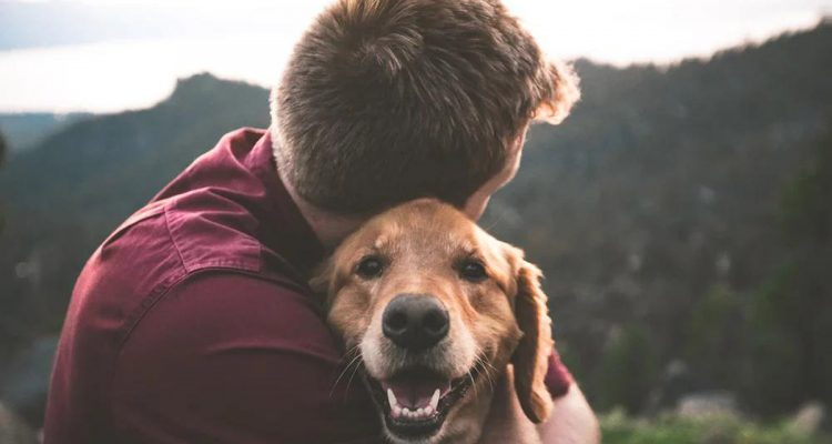 A Life Renewed: Human-animal bond In Ministry (HIM) Re-assimilating Ex-Convicts